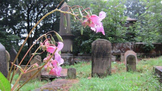 Cemetery (c) BBC