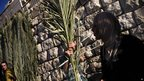 A Palestinian man carries palm fronds to lay on the graves relatives as a tradition during the first day of Eid al-Fitr