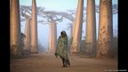 A child walks near the city of Morondava, on the west coast of Madagascar through an ancient forest of Baobab trees