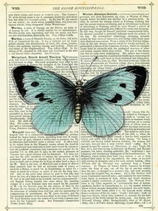 Blue Butterfly Dictionary Art Print