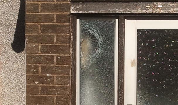 glass in door