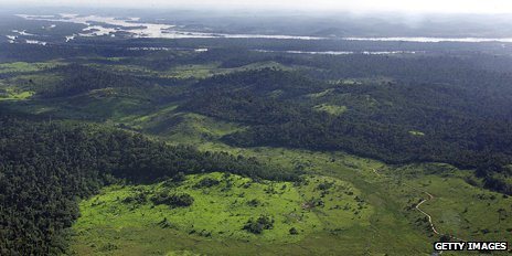 Deforested area of Amazon