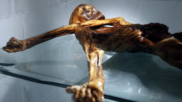 The mummy called Otzi on display