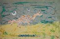 Crabella