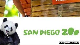Screengrab of San Diego Zoo website