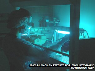 Laboratory for the extraction of ancient DNA.