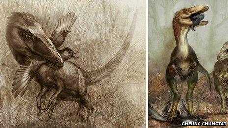 Sinocallyopterix hunting