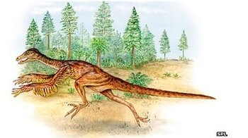 Sinornithosaurus