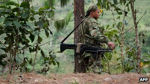 Farc guerrilla (file)