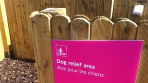 Dog relief area