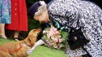 The Queen and corgi