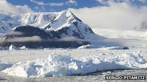 Sea ice in the Antarctic