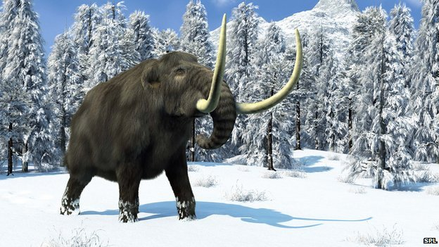 Giant wooly mammoth