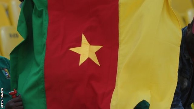 The Cameroon flag