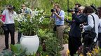 Photographers take pictures at Singapore's Botanic Gardens during Catherine and William's visit
