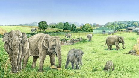 An artists' impression of the new elephant enclosure at Noah's Ark Zoo Farm
