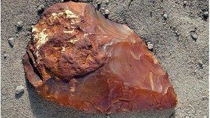 Stone hand axe