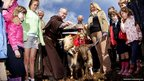 Father Brian McKay pours holy water on the head of one of three goats during a blessing ceremony on Howth Head in Dublin