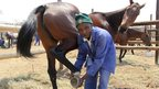 A groom in Ruwa, Zimbabwe - Sunday 9 August 2012
