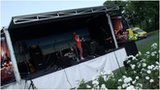 Minifest in Worcester's Cripplegate Park