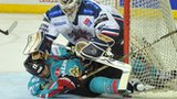 Dundee netminder Nic Riopel tangles with Belfast's Greg Stewart