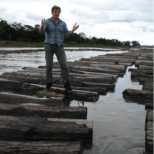 Leo Johnson on illegal logs