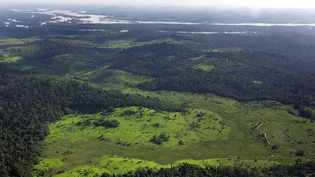 Overview of a deforested area in the border of Xingu river, 140 Km from Anapu city in the Amazon rain forest, northern Brazil