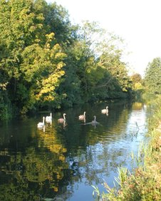 River Waveney, Bungay