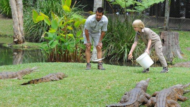 Robert Irwin feeding crocodiles