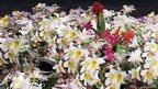 Enciclopedia dei fiori da giardino (detail) by Andrea Mastro, 2009