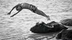 A boy dives past a water buffalo in Iran