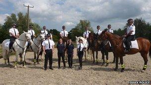 Horse unit