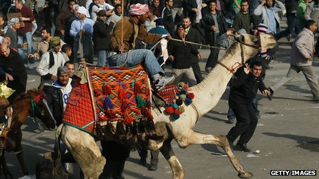 A supporter of former Egyptian President Hosni Mubarak rides a camel through the crowd during a clash between pro-Mubarak and anti-government protesters in Tahrir Square, Cairo on February 2, 2011