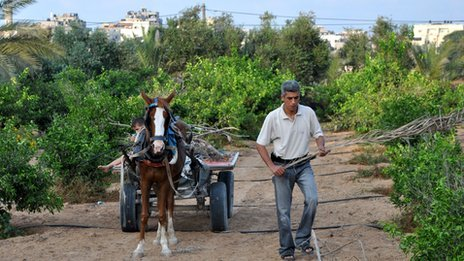 Hamed Talba with his son on a horse and cart