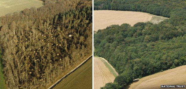 Images of the National Trust's Drover Estate in 1987 (left) and 2007 (right) (Image: National Trust)