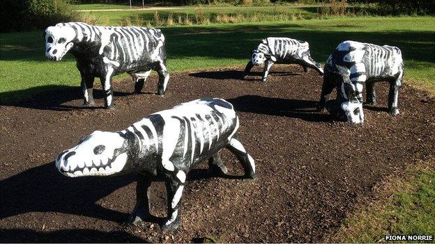 Milton Keynes' concrete cows turned into skeletons