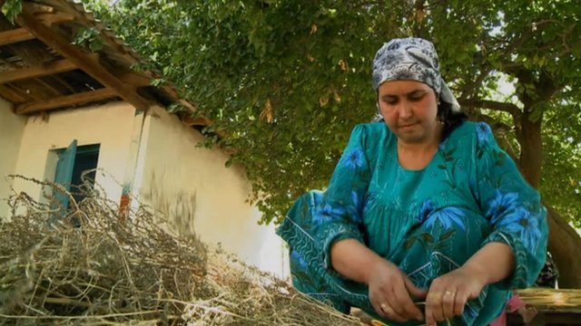 Tajik woman