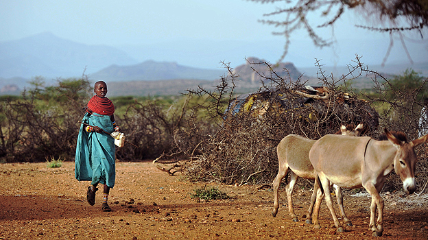 Woman herding donkeys in Kenya&#039;s Samburu reserve