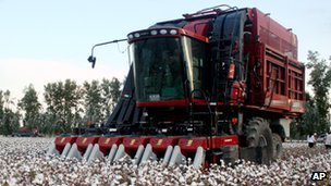 A mechanised cotton picker at work in China