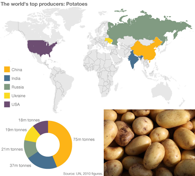 Infographic showing potatoes production