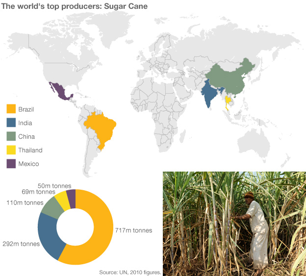 Infographic showing sugar production