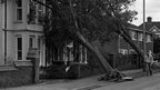 Uprooted trees crashed onto houses in Old Tovil Road in Maidstone, Kent after a hurricane hit Britain.