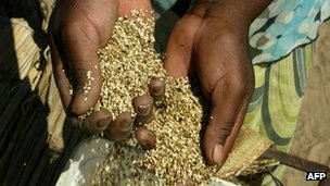 Handling grain