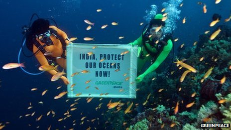 Greenpeace divers hold banner underwater with words &quot;India, Protect our oceans now&quot; written on it