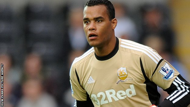 Swansea City goalkeeper Michel Vorm