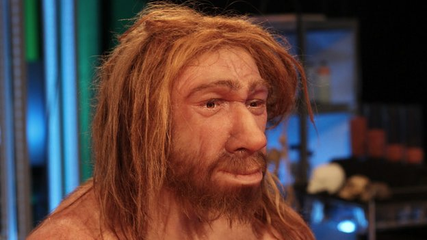 Reconstructed face of a Neanderthal hominid