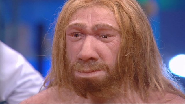 A reconstruction of a Neanderthal