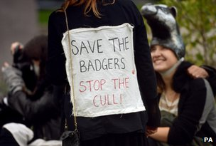 Badger protest, 21 Oct