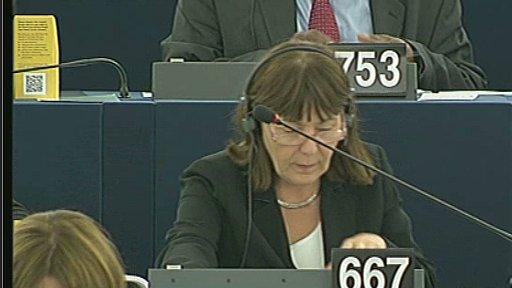 MEP voting
