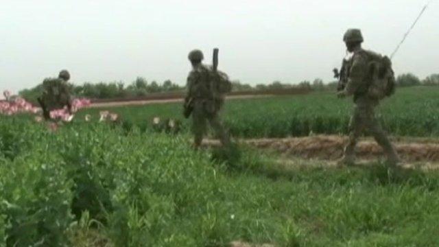 Troops on patrol